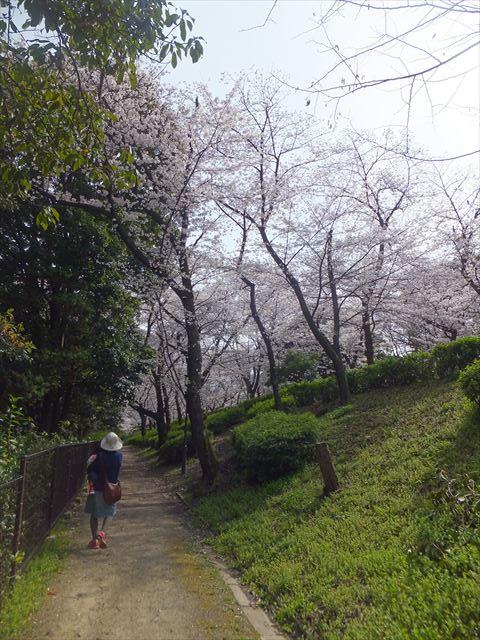 大阪城公園内の路地