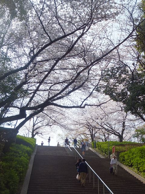 大阪城公園の階段