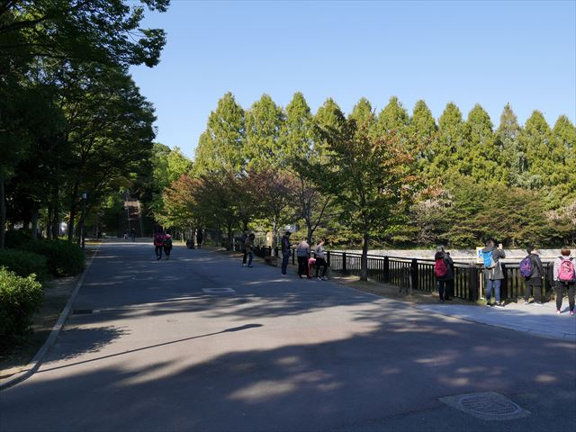 大阪城公園の東外堀近くの階段