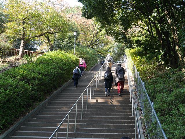 大阪城公園の東外堀近くの階段を上る