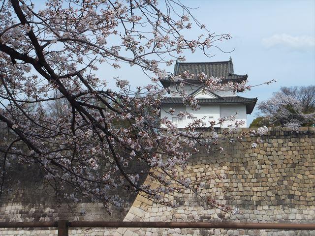 大阪城「六番櫓」と桜