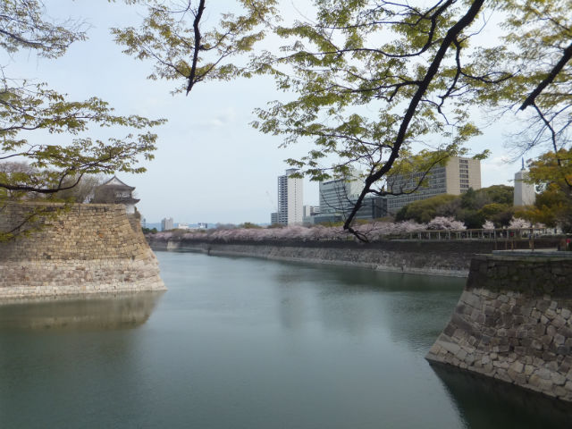 大阪城「六番櫓」と南外堀と桜