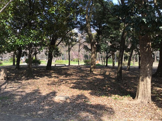 大阪城公園内の「バーベキュー指定区域」
