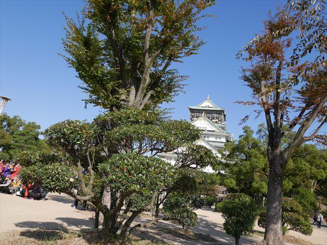 大阪城と本丸
